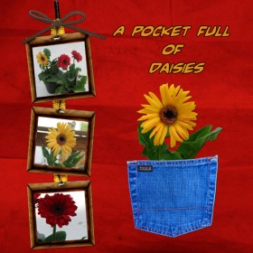 Pocket Flower