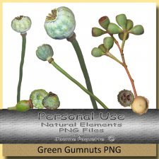 Natural Elements Green Gum Nuts