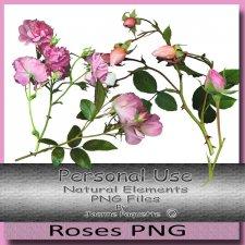 Natural Elements Roses