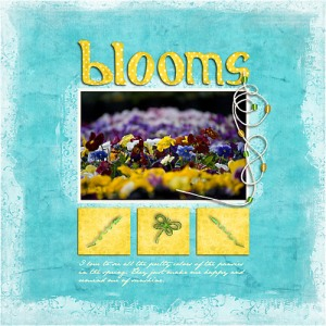Blooms by Terry