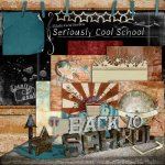 Seriously Cool School by Julie Mead